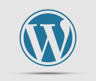 Why you shouldn't use Wordpress for your business website!